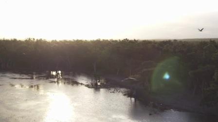 SPHJ-425-澳大利亚震撼的沙滩雨林自然风景实拍视