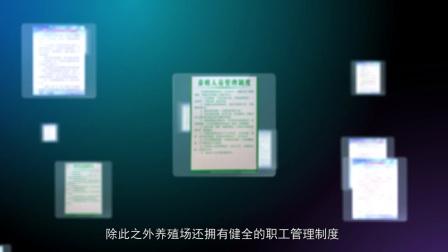 远华商贸养殖场宣传片  昆明原色影视广告出品