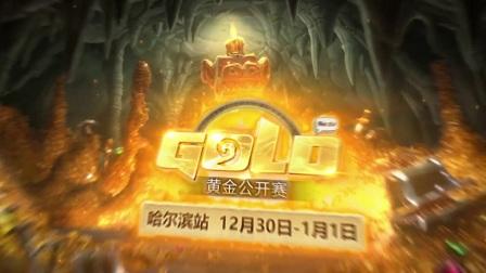 12月30日 glbirdytang vs RNGLeaoh 专业组 小组赛 2017炉石传说黄金公开赛哈尔滨站