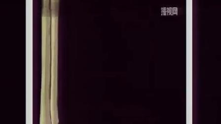 人教版初中歷史七年級下冊活動課《中國傳統節日的起源》湖北【梅瓊】(初中歷史研磨課教學實錄)
