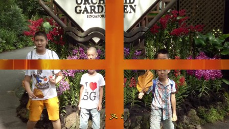 小学生新加坡探索科学体验文化游学营1