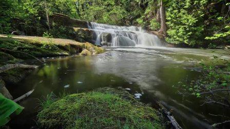 SPHJ-693-高清实拍自然世界风景森林视频素材