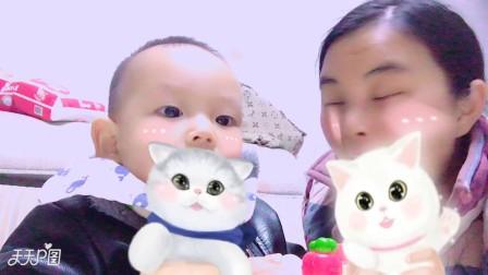 2018/01/13  动效自拍  两只猫