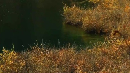自然风景区欣赏:九寨沟