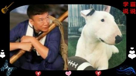 """当红4大明星与动物神""""撞脸"""",杨洋可爱"""