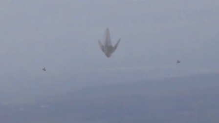 目击不明飞行物!发现巨型UFO