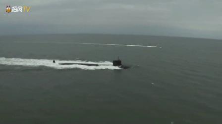 动物猎奇:一群海豚游在潜艇前面,带着潜艇前