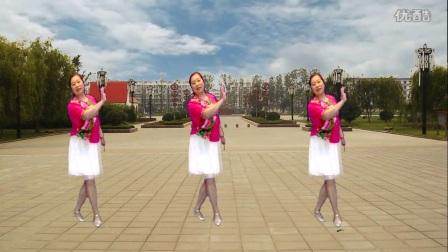 宜阳明萱广场舞 酸酸甜甜的思念 中老年健身舞