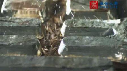 中映传媒-影视广告-金融--生命人寿宣传片2011&m