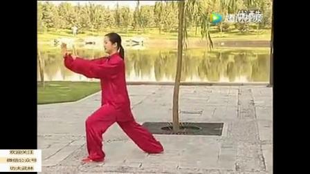 堪称经典!吴阿敏老师杨式40式太极拳全套精彩