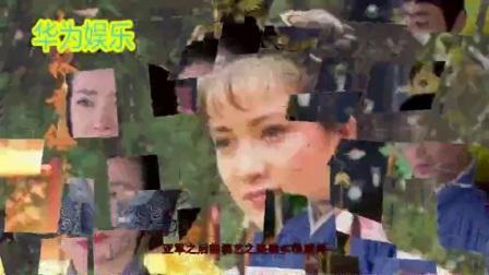 琼瑶女郎:古装第一美女何晴,感情生活让人遗