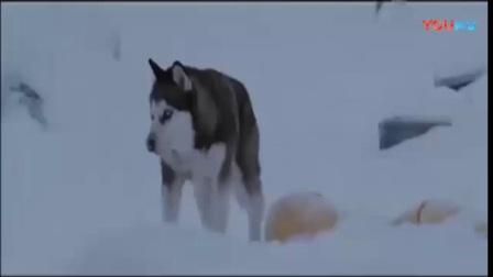 狼性团队非常团结协作, 励志视频