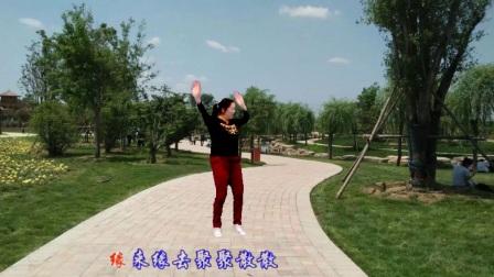 点击观看《宜阳明萱广场舞 简单易学32步 放不下的情缘 编舞 一莲》