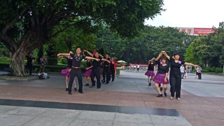 广晋广场舞 陪你一起看草原 休闲健身伦巴舞