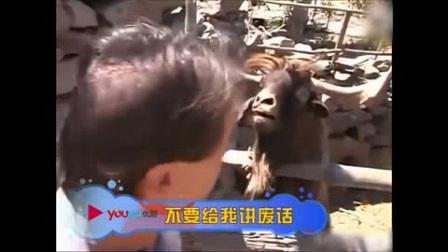 我在那些逆天的搞笑动物们 31截了一段小视频