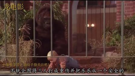 三壮汉绑架一岁小孩, 却被猩猩救下, 最终却被小