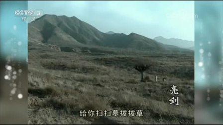 综艺喜乐汇-2017-143 亮剑13