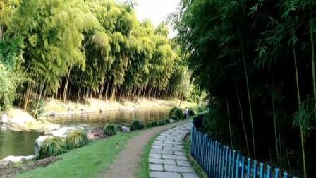 杭州西湖玉泉植物园和黄龙体育埸