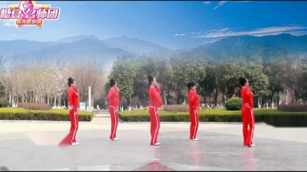 64步广场舞 健身歌 正反面附口令分解视频教程