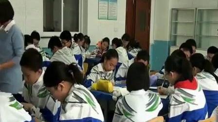 人教版初中化学九年级《原子的结构》教学视频-辽宁省
