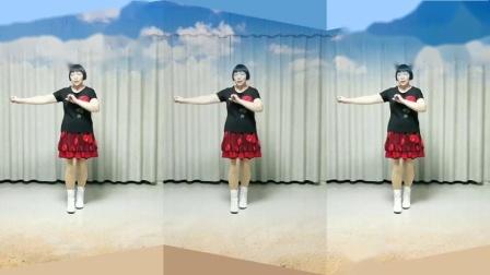 莲芳姐广场舞《你是我永远的痛》