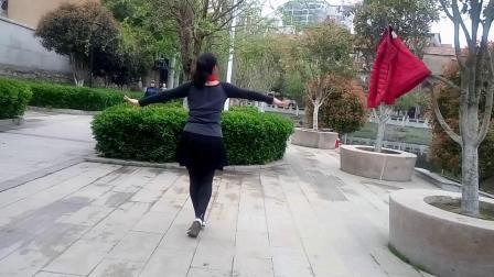 (4)蝶舞仙子广场舞《天边的爱人》背面习舞  自学2019年3月27日