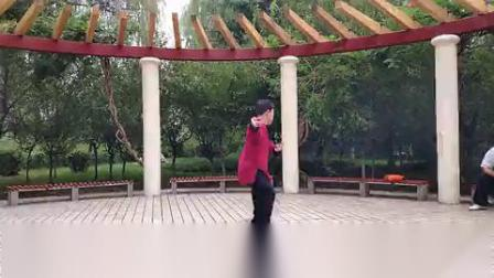 温爱菊学习陈氏太极拳十九式