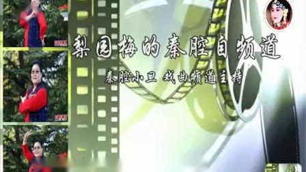 梨园梅的秦腔自频道-《祝福》选段