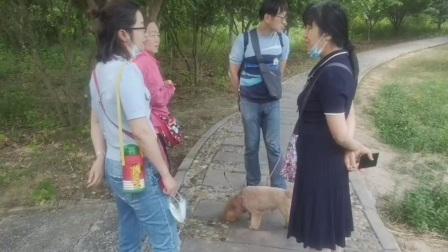 大蜀山森林公園