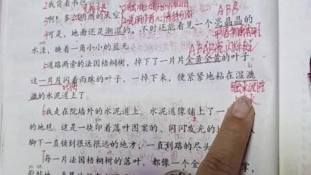 三上语文课本第5课铺满金色巴掌的水泥道视频课