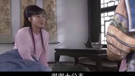 李卫当官3大内低手(30集全)