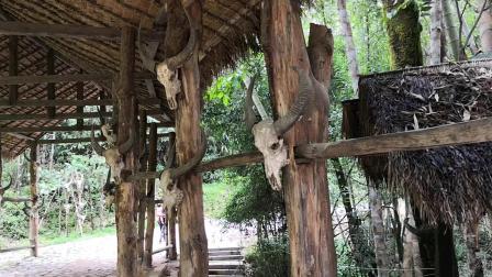 佤族原始部落的牛图腾