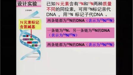 人教版高中生物必修2 遗传与进化《第3节 DNA的复制》(高中生物教师参赛获奖课例教学视频)