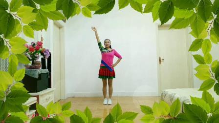 焦陂百和广场舞 玩腻 正背面附分解十二步跳跳舞