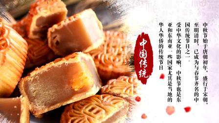 AE290 中国风水墨风格传统节日中秋节AE片头模板