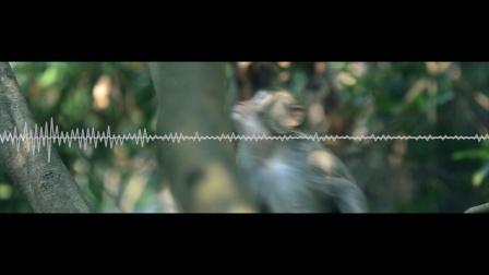 创森视频公益广告(创意睁眼版)-地铁、公交