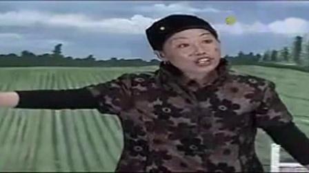 豫剧两个老婆骂鸡全剧(孙海州)