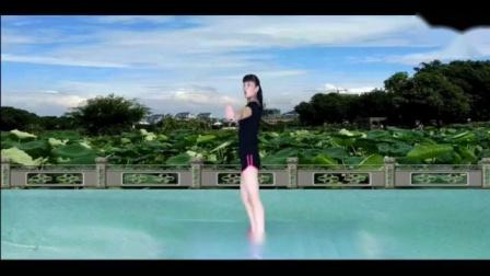 太湖一莲广场舞迷人小...