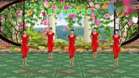 (195)红乔开心广场舞累的跟狗一样编舞:岢儿 演示 制作:袖舞流年