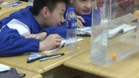 沪科粤教版初中物理八年级下册《研究物体的浮沉条件》(初中物理青年教师参赛获奖课例教学视频)