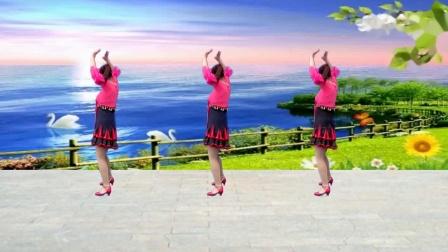 点击观看《武安东寺庄广场舞 爱上一朵花 好看的武安的舞蹈视频》