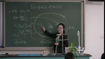 呼吸與呼吸作用初中生物北京版-北京市第十八中學