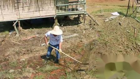 深山视频隐居农村,养鱼打造建竹屋,修路迷你小放进小伙ps图片