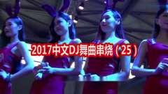 2017中文DJ舞曲串烧(25)