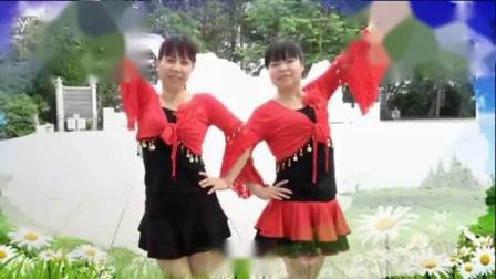 广场舞系列 广场舞大全 16步疯狂爱爱爱双人舞.flv