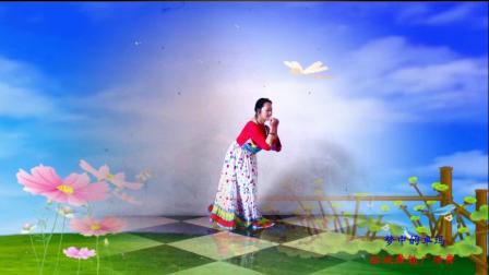 点击观看《榕城舞魅广场舞《梦中的卓玛》 编舞 曹曹曹gcw》