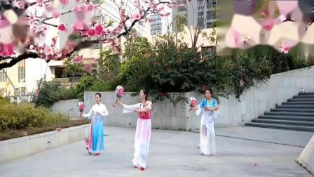 湖北小马广场舞《桃花谣》