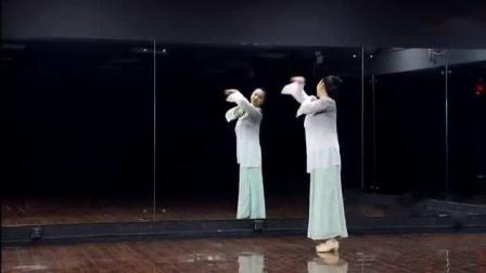 我在《知否知否》反面 糖豆广场舞课堂 古典舞 20190225_clip截了
