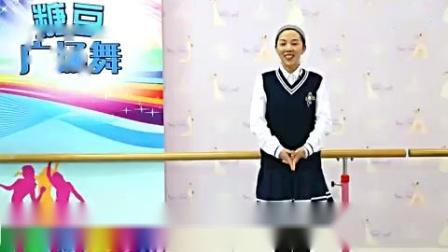 糖豆广场舞课堂《青苹果乐园》
