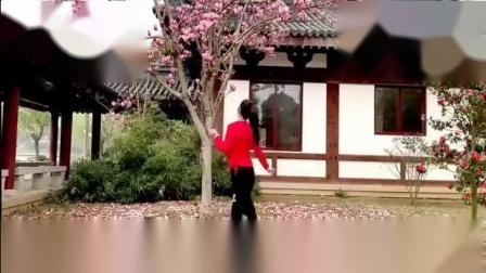 太湖一莲广场舞 长路漫漫陪你走 背面